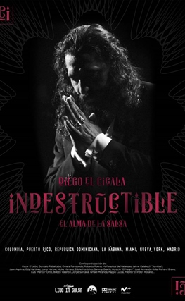Portada de la película Indestructible